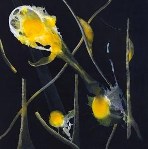 El bosque heredado, 2018 Acrílico sobre tela, 200 x 200 cm