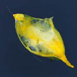 La piel de la pintura, 2018 Acrílico sobre tela, 50 x 50 cm